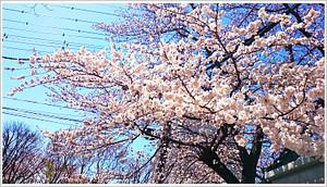 Blog355_2