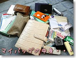 Blog1080