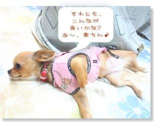 Blog126